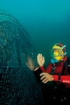 Tickets for Sunken cities: Egypt's lost worlds (Exhibition) (British Museum, Inner London)