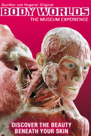 Tickets for Body Worlds (Exhibition) (The London Pavilion, Inner London)