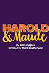 Tickets for Harold and Maude (Charing Cross Theatre, Inner London)