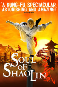 Soul of Shaolin (Troubadour Wembley Park Theatre, Outer London)