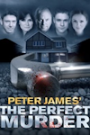 The Perfect Murder archive