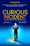 Tickets for The Curious Incident of the Dog in the Night-Time (Piccadilly Theatre, West End)