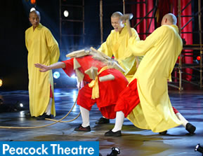 Tickets for Shaolin Monks - SHAOLIN (Peacock Theatre, Inner London)